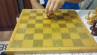 Шахматы. Как делать вилки и связки в шахматной партии. Урок 3.