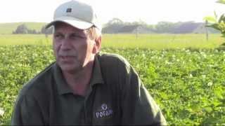 Полив картофеля(Общеизвестно, что хороший полив - это половина успеха в выращивании такой культуры как картофель. И хотя..., 2012-11-20T10:54:27.000Z)