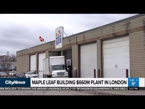 Maple Leaf Building $660M Plant In London, Ont.