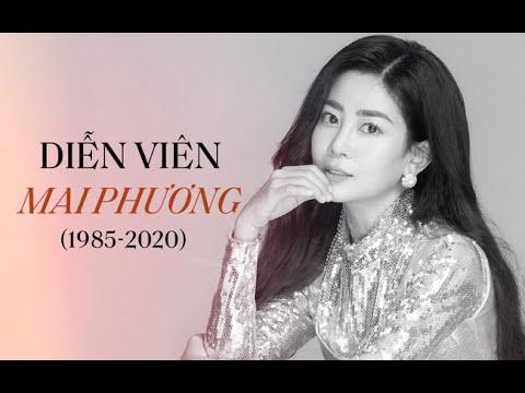 Những ngày cuối đời của diễn viên Mai Phương, Lavie cần được bảo vệ