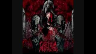 Cast From Perfection - Interlude+The Saint The Sinner