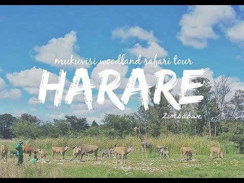 Emirates Cabin Crew Travelogue #17: Harare, Zimbabwe (Horse Riding Safari Tour)
