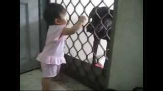 Tong Weiqi Feeding Little Black Weimaraner Dog
