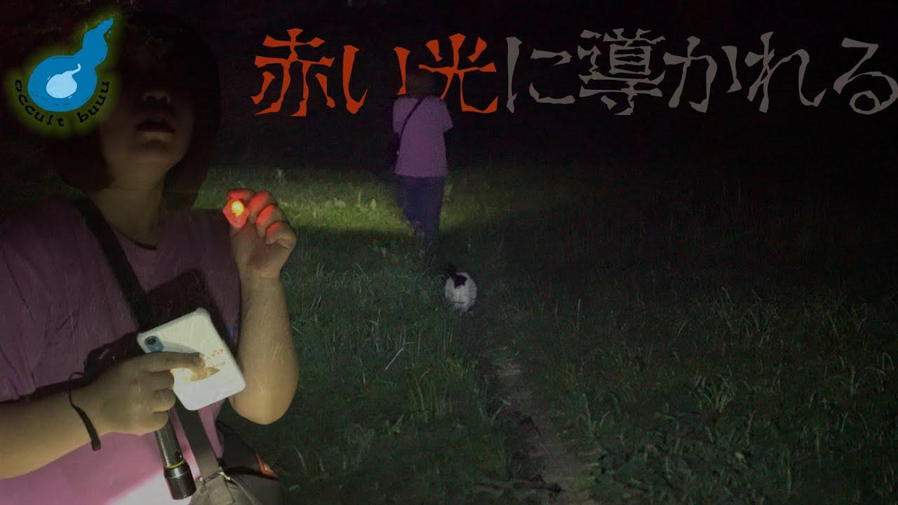 【心霊タクシー】因果関係が示す赤色。ネコを誘い行く先に・・・【第一夜】