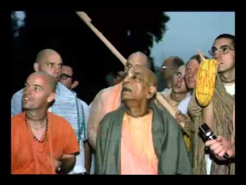 The Devotional Service, We Have To Execute It With Patience, With Enthusiasm  - Prabhupada 0608