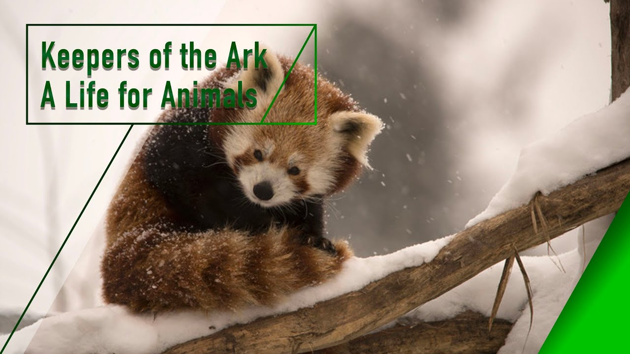 Keepers of the Ark - A Life for Animals - The Secrets of Nature