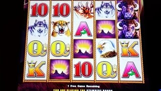 Buffalo Stampede Slot Machine-MAX BET on 2 Bonuses & A Line Hit at $3.00 Bet