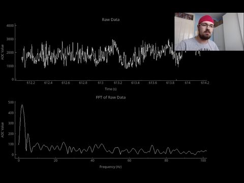 Demonstration Of A Low Cost EEG Circuit