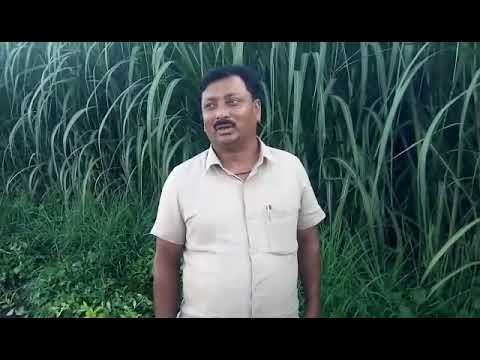 Golden Future's Bio Krushidhan