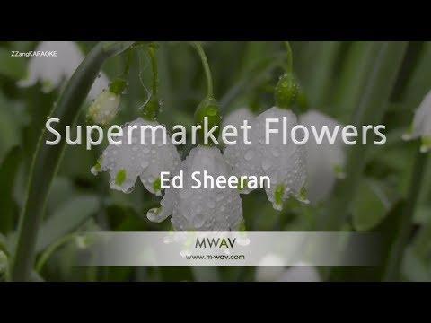 Ed Sheeran - Supermarket Flowers (Melody) (Karaoke Version) [ZZang KARAOKE]