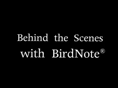 Behind The Scenes With Birdnote