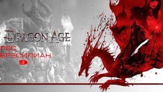 видео Dragon Age : Origins Лес Бресилиан / Руины - Dragon Age :Origins - Прохождение игр - Каталог статей - молодежный сайт