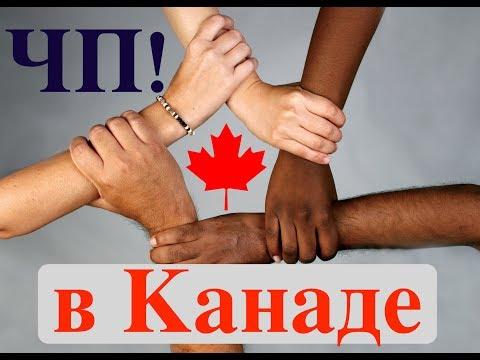 ЧП в Канаде! Случай расизма в Торонто. Что такое Affirmative Action. Эмиграция в Канаду. Канада.
