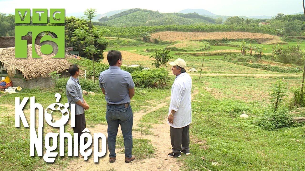 Nông hộ đặc biệt khởi nghiệp trên 12 ha đất   | VTC16