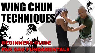 WING CHUN TECHNIQUES: PAK SAU x3 (fundamentals)