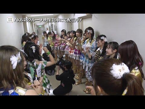 【ちょい見せ映像倉庫】2019年9月27日 AKB48全国ツアー2019~楽しいばかりがAKB!~千葉 チームB公演 活動記録