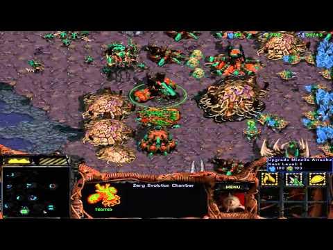StarCraft Brood War Custom Campaign: After Brood War -- Episode II 10. The Archipelago