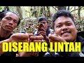 Ngakak Mantan Preman Takut Sama Lintah Saat Mikat Di Hutan  Mp3 - Mp4 Download