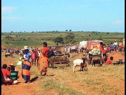 Global Food Assistance Outlook Brief (June 2017)