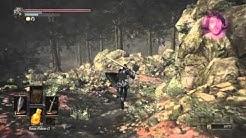 Dark Souls 3/ Schwarze Ritter Set Farmen