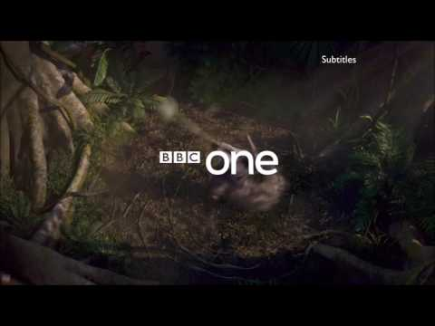 BBC One  Summer Olympic Games 2016 ident