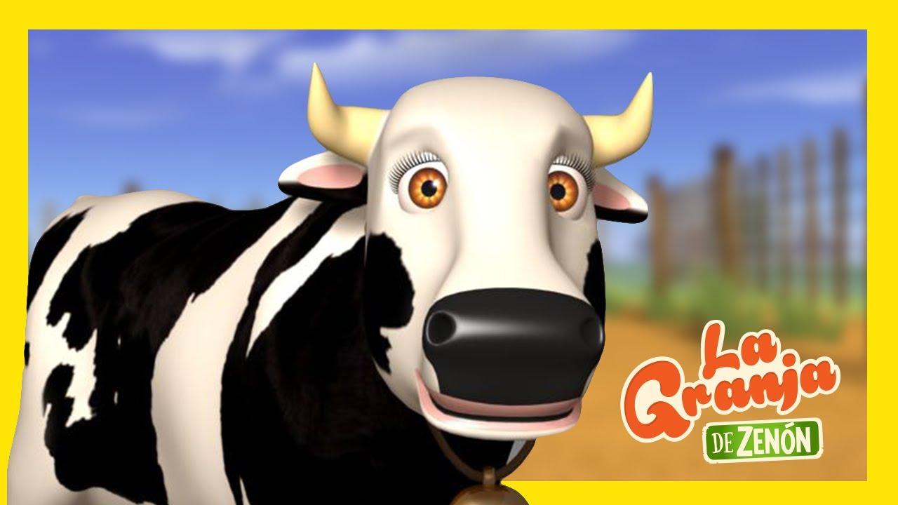 Curemos a La Vaca Lola - Sí y No | La Granja de Zenón