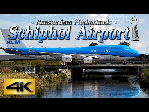 【4K 60P】Special Spotting in AMSTERDAM AIRPORT SCHIPHOL 2019 the Amazing Airport Spotting