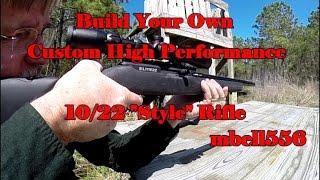 DIY Custom 10/22: Build Your Own Custom 22 LR Ruger 10/22 Style Rifle