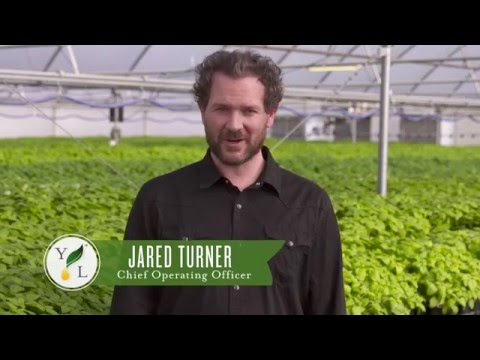 Young Living Farms with Jared Turner 2016