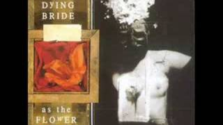 My Dying Bride -  The Forever People
