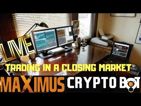 Maximus Cryptobot Regular Trading Session - Tips And Tricks Explained