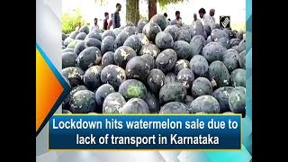 Lockdown hits watermelon sale …