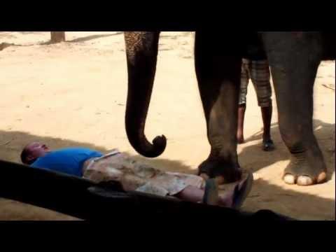 Массаж хуя слоном