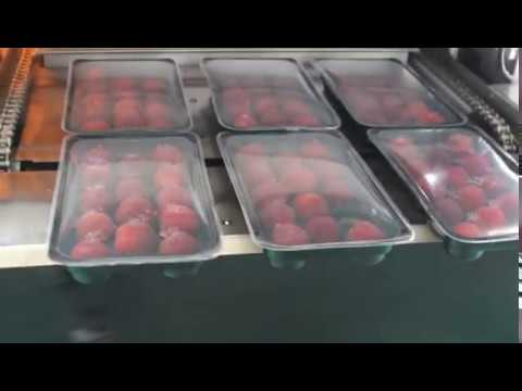 Automatic Tray Vacuum MAP Tray Sealing Machine For Fruit Trays Packaging