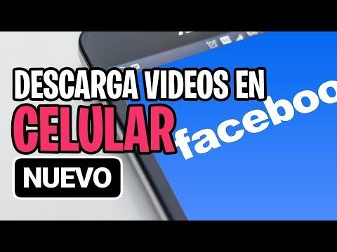COMO DESCARGAR VIDEOS DE FACEBOOK EN TU CELULAR SIN PROGRAMAS 🎬