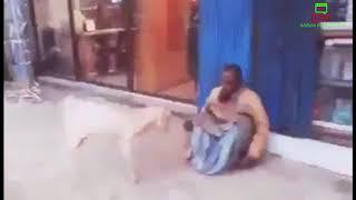 ছাগল পাগল বানালো।The goat went crazy.