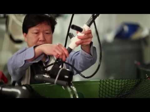 2015 Top 10 Finalist Cooke Aquaculture Inc