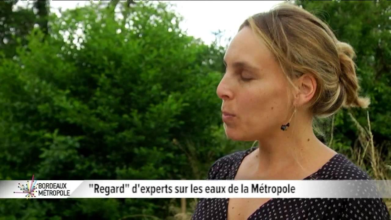 Bordeaux : Regard d'experts sur les eaux de la Métropole