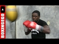 ANDRE BERTO TRAINING IN 20 OZ. GLOVES MAKES THEM LOOK LIKE 10'S DOE + TALKS MAYWEATHER VS MCGREGOR