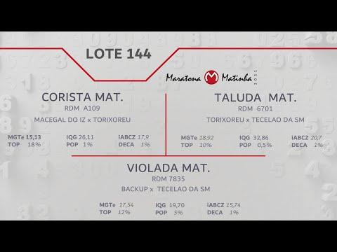 LOTE 144 Maratona Matinha