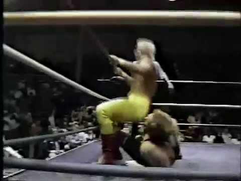 WW 2/25/89 Sting vs Mike Thor- Fantastics Inv