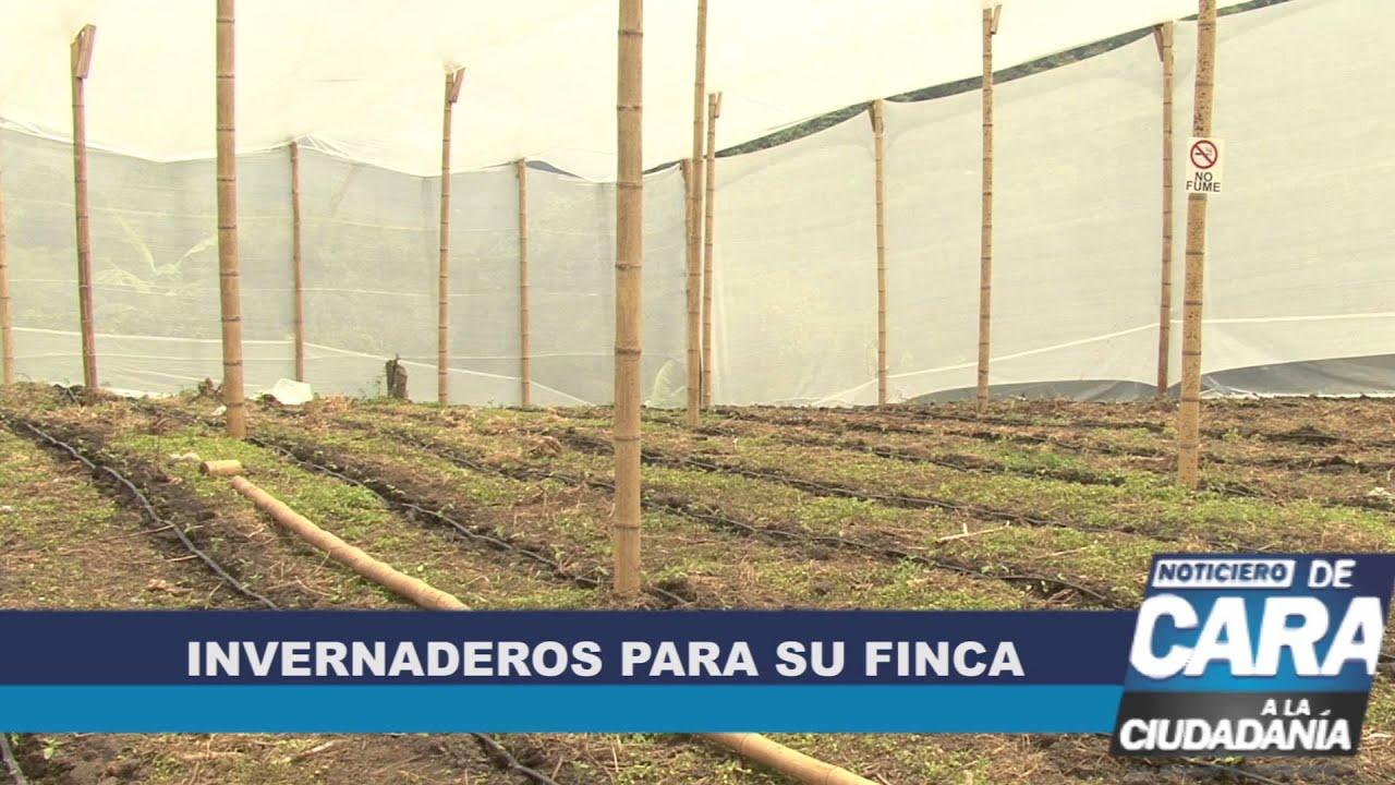 As se construyen los invernaderos en el tolima youtube for Construccion de viveros e invernaderos