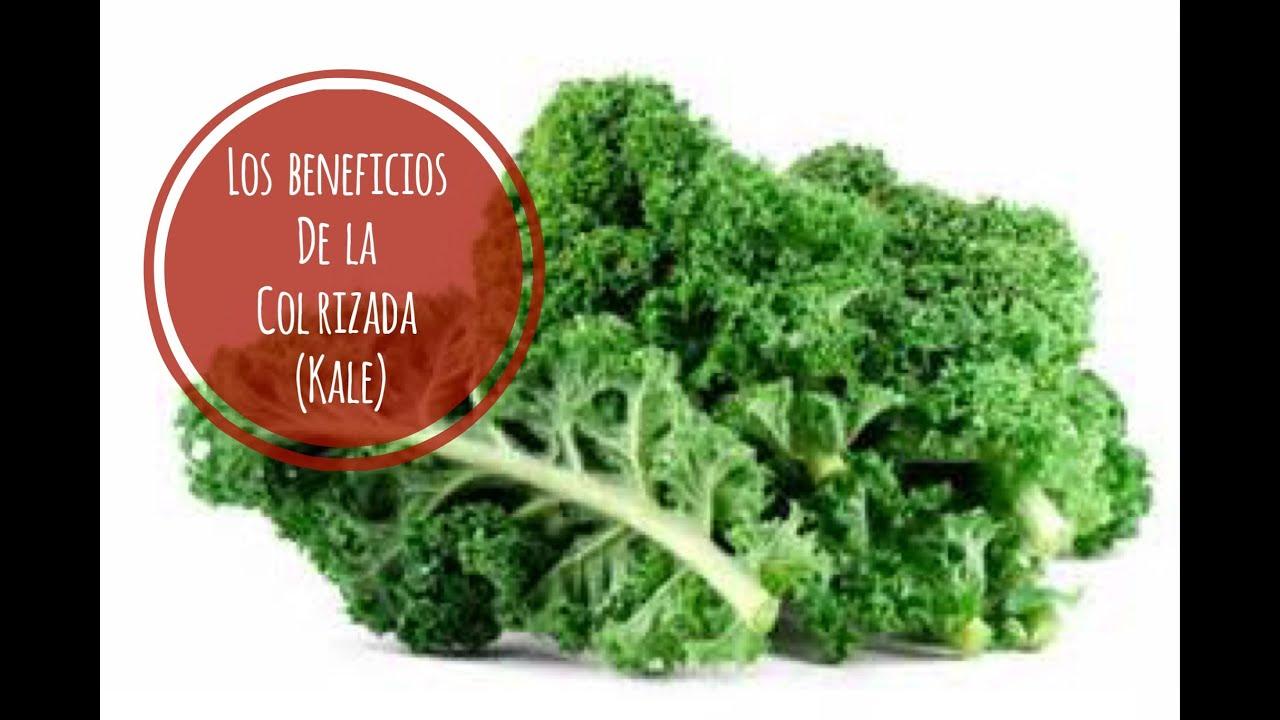 17 BENEFICIOS DE LA COL RIZADA ( KALE). NUTRIVLOGS ...