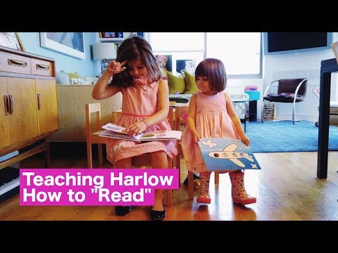 "Teaching Harlow How to ""Read"""