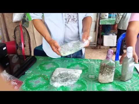 องค์การและการจัดการธุรกิจการปลูกหน่อไม้ฝรั่ง2