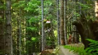 Mtb freeride downhill. HD