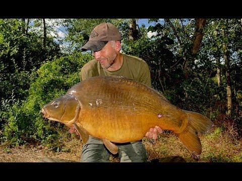 Big Carp In The Summer - Carp Fishing Blog June 2019