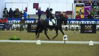 Rock Dressage! Anne Marie Bork Eppers Winter Champs 2018