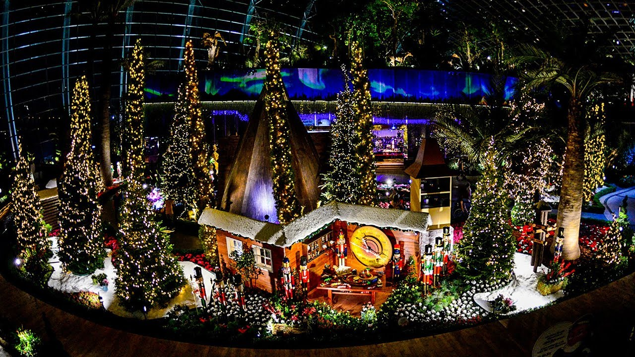 Gardens by the Bay - Christmas Display on Poinsettia Wishes (Flower ...