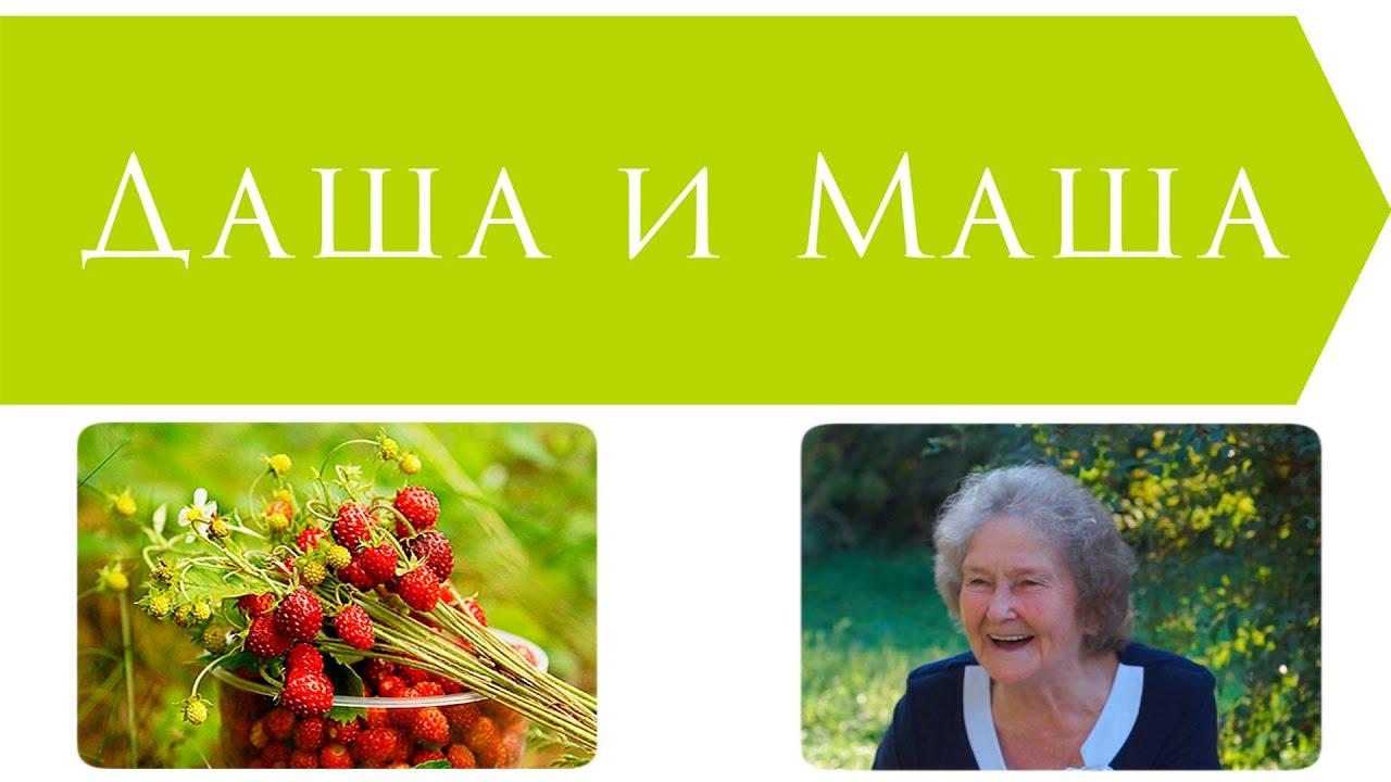 Русская народная сказка даша и маша картинки